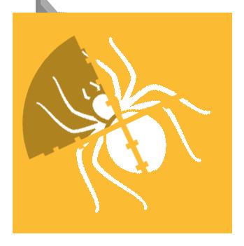 Targeting Spiders Pest Control | Spider Exterminators Cox Pest Control