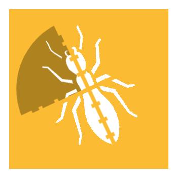 Targeting Termite Infestations | Cox Pest Control Management Termite Exterminators